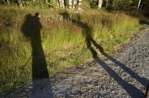Long Morning Shadows