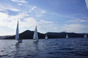 Sail boats in the sound